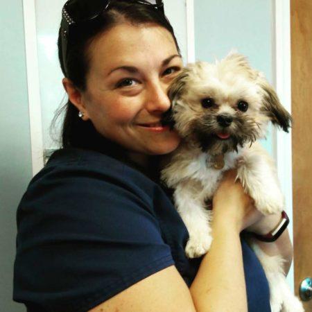 Veterinary Tech Holding Dog, Veterinary Hospital In Western MA, Animal Hospital In Western MA