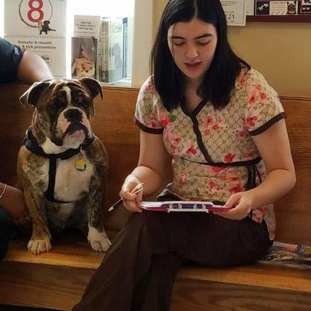 Vet Tech With Dog, Veterinary Hospital In Springfield MA, Veterinary Hospital In Western MA