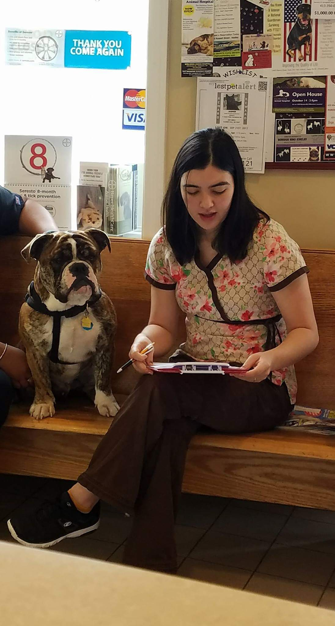 Pet Gallery - East Springfield Veterinary Hospital | Western