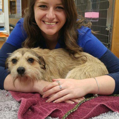 Vet Tech With Dog, Veterinary Hospital