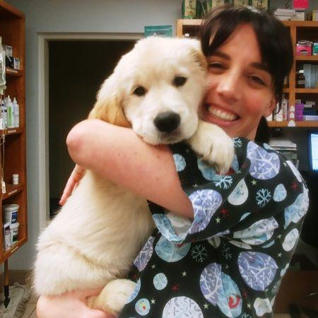 Vet Tech Holding Puppy, Animal Hospital Western MA, Springfield MA Animal Hospital, East Springfield Veterinary Hospital
