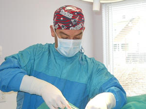 veterinarian performing surgery, pet surgery, animal surgeon